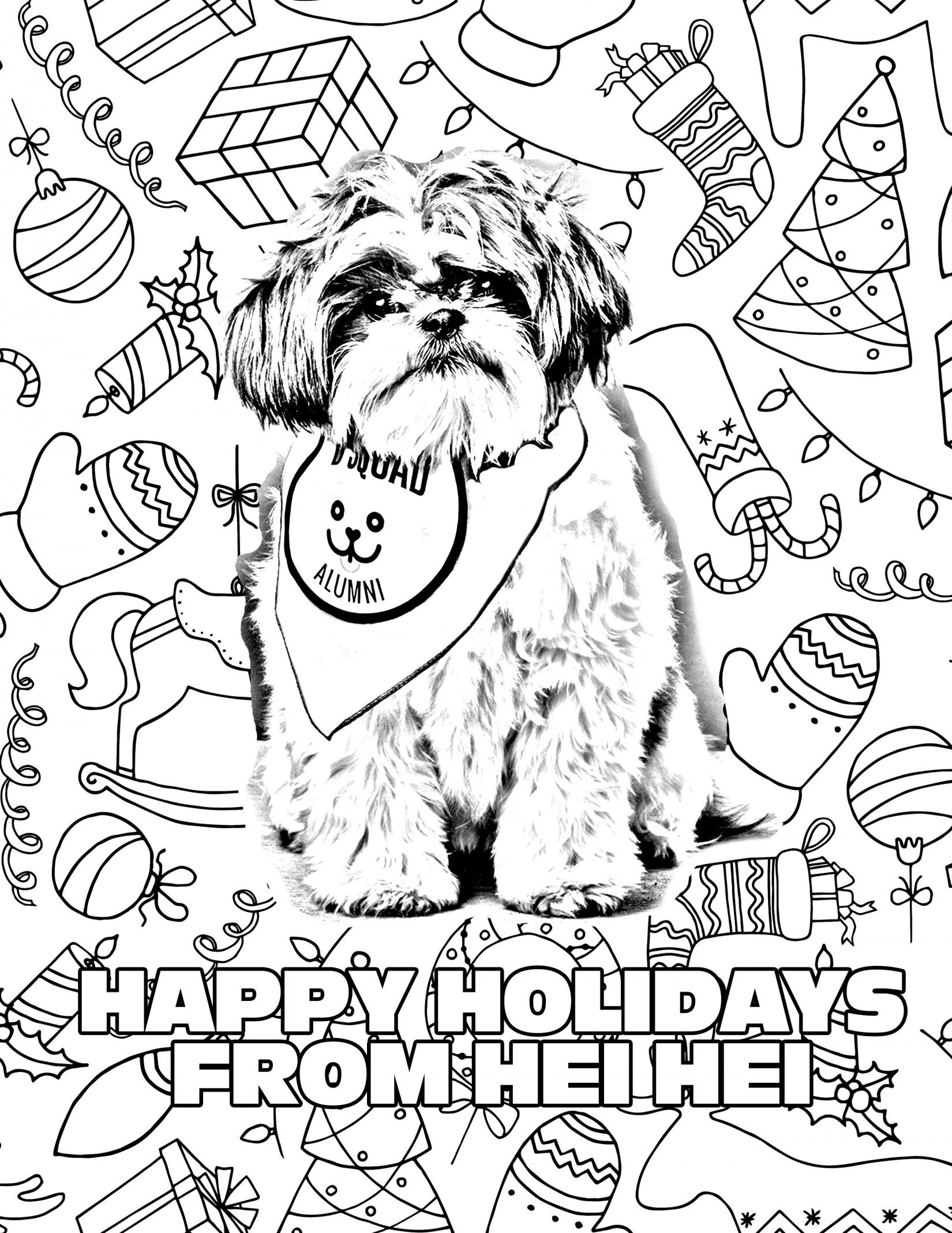 Happy Holidays from Hei Hei! Media